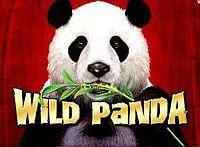 Wild Panda Logo